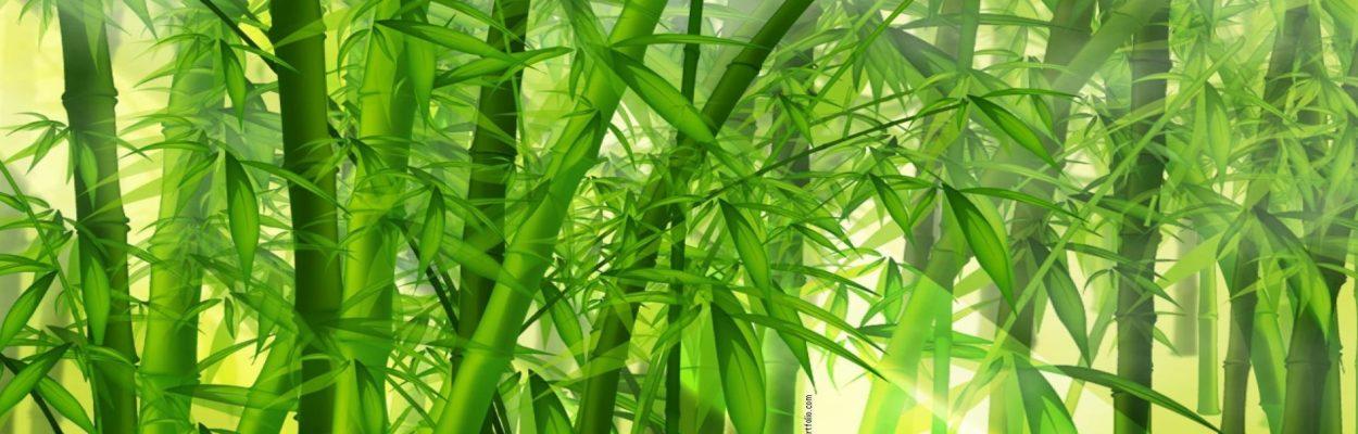 Bamboo and Agarwood