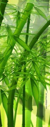 Bamboo-and-Agarwood
