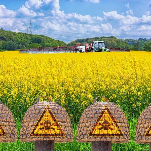 EPA Pesticide Registration
